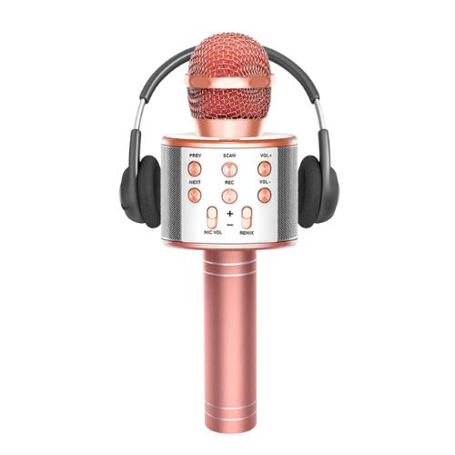 Extra 55% OFF 3 in 1 Wireless Karaoke Microphone for Kids